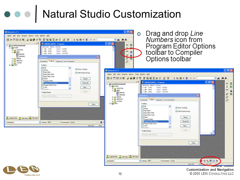 16 Natural Studio Customization and Navigation © 2005 LEN C ONSULTING LLC Natural Studio Customization Drag and drop Line Numbers icon from Program Editor Options toolbar to Compiler Options toolbar