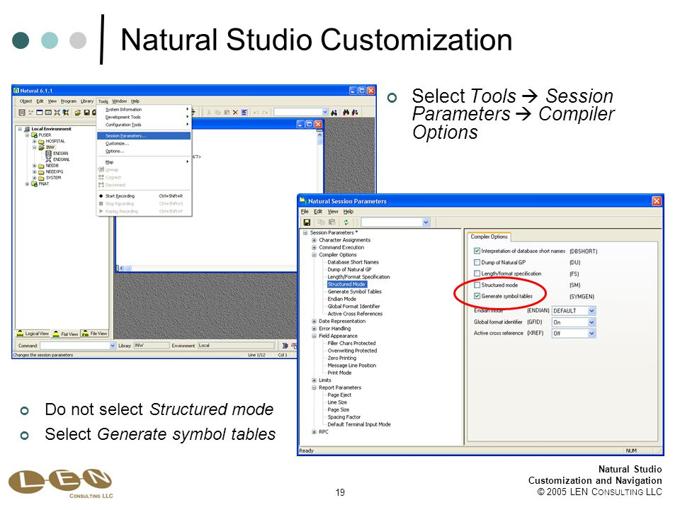 19 Natural Studio Customization and Navigation © 2005 LEN C ONSULTING LLC Natural Studio Customization Select Tools  Session Parameters  Compiler Options Do not select Structured mode Select Generate symbol tables