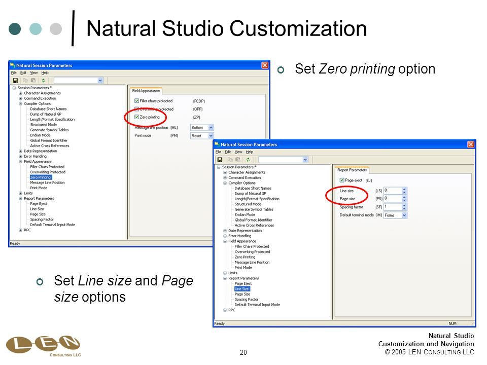 20 Natural Studio Customization and Navigation © 2005 LEN C ONSULTING LLC Natural Studio Customization Set Zero printing option Set Line size and Page size options
