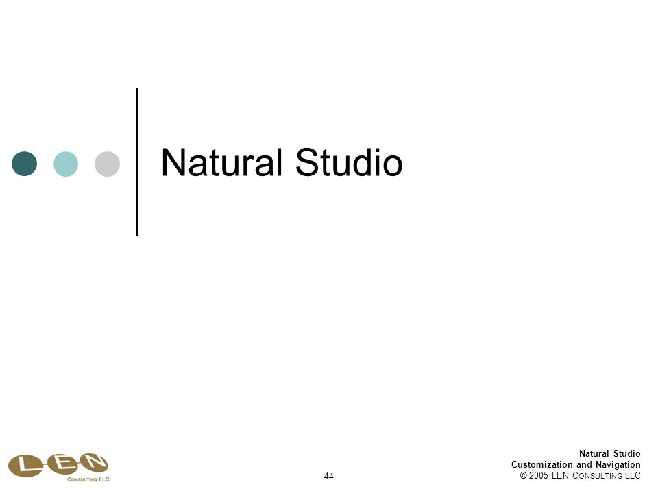 Natural Studio Customization and Navigation © 2005 LEN C ONSULTING LLC 44 Natural Studio