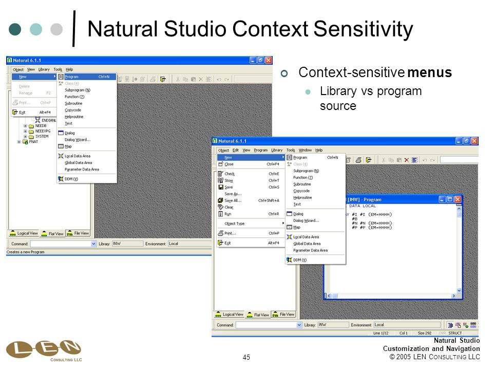 45 Natural Studio Customization and Navigation © 2005 LEN C ONSULTING LLC Natural Studio Context Sensitivity Context-sensitive menus Library vs program source