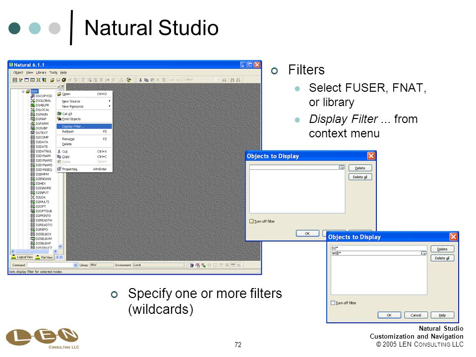 72 Natural Studio Customization and Navigation © 2005 LEN C ONSULTING LLC Natural Studio Filters Select FUSER, FNAT, or library Display Filter...