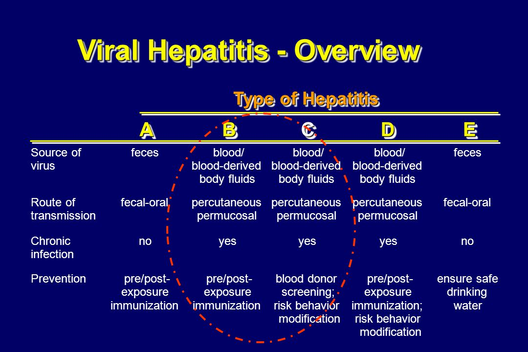 Viral Hepatitis - Overview AABBCCDDEE Source of virus fecesblood/ blood-derived body fluids blood/ blood-derived body fluids blood/ blood-derived body fluids feces Route of transmission fecal-oralpercutaneous permucosal percutaneous permucosal percutaneous permucosal fecal-oral Chronic infection noyes no Preventionpre/post- exposure immunization pre/post- exposure immunization blood donor screening; risk behavior modification pre/post- exposure immunization; risk behavior modification ensure safe drinking water Type of Hepatitis