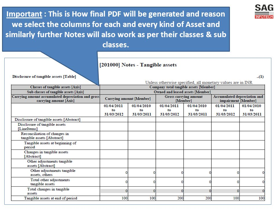 Important : This is How final PDF will be generated and reason we select the columns for each and every kind of Asset and similarly further Notes will also work as per their classes & sub classes.