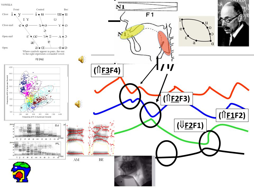 101 /i/ (  F3F4) (  F2F3) (  F1F2) (  F2F1)