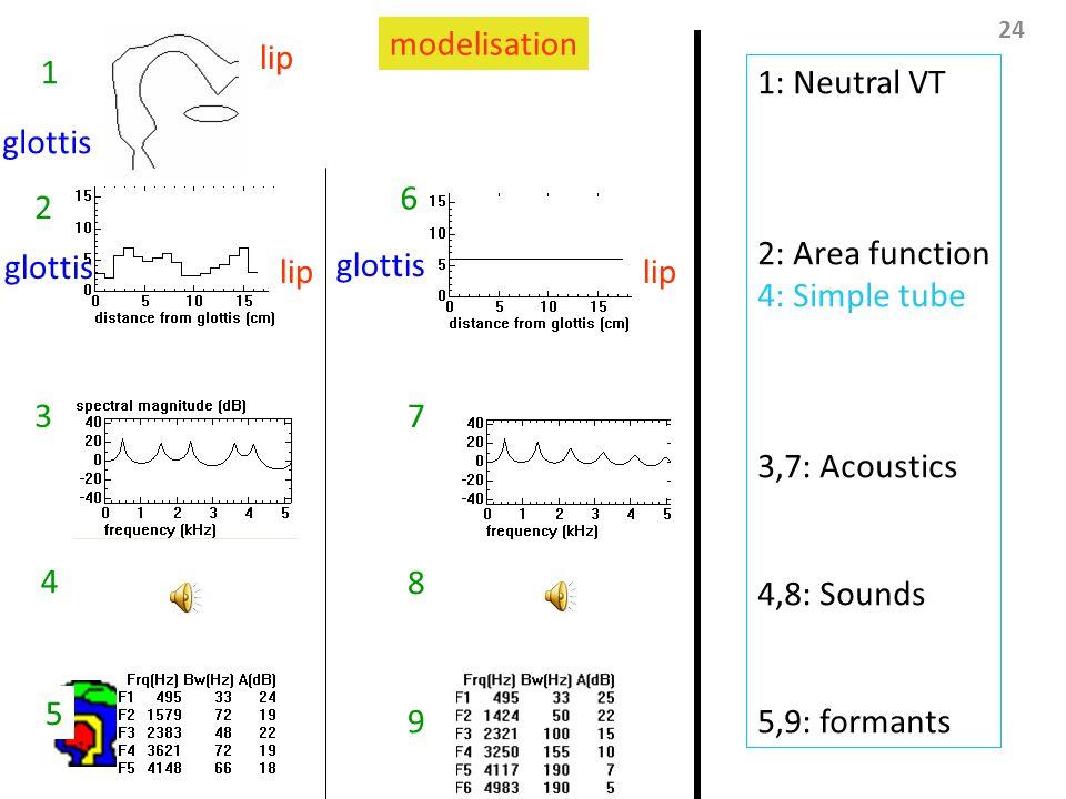 24 lip glottis 1 1 1 7 6 3 2 1: Neutral VT 2: Area function 4: Simple tube 3,7: Acoustics 4,8: Sounds 5,9: formants 4 8 5 9 modelisation