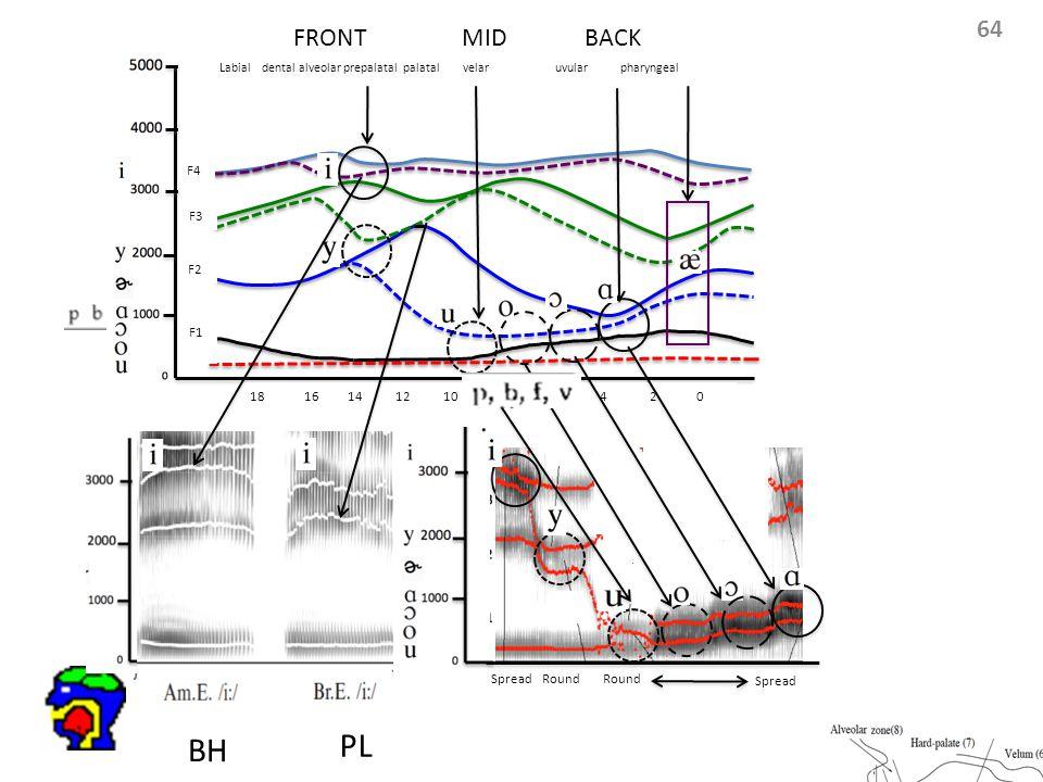 64 Labial dental alveolar prepalatal palatal velar uvular pharyngeal F4 F3 F2 F1 18 16 14 12 10 8 6 4 2 0 FRONT MID BACK Round Spread Round Spread BH PL