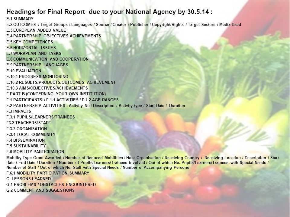 Headings for Final Report due to your National Agency by 30.5.14 : E.1 SUMMARY E.2 OUTCOMES : Target Groups / Languages / Source / Creator / Publisher