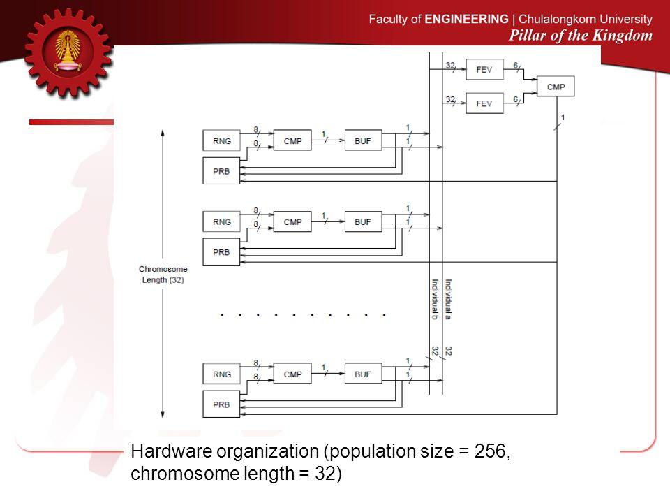 Hardware organization (population size = 256, chromosome length = 32)