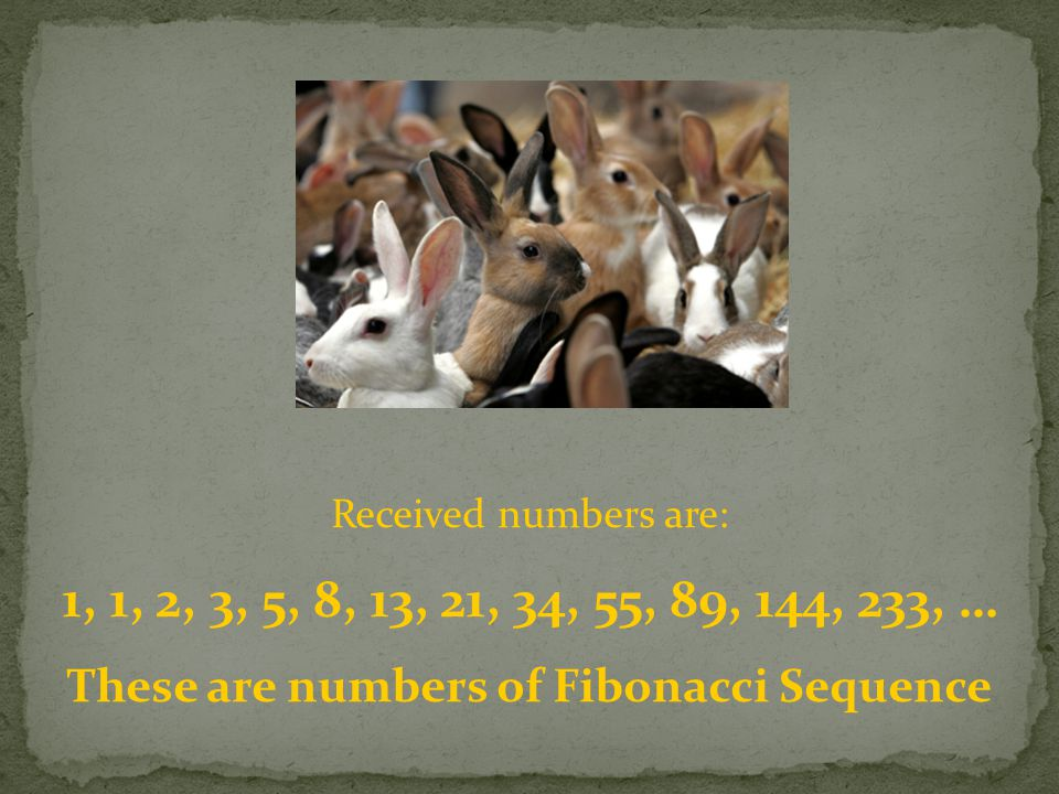 Received numbers are: 1, 1, 2, 3, 5, 8, 13, 21, 34, 55, 89, 144, 233, … These are numbers of Fibonacci Sequence