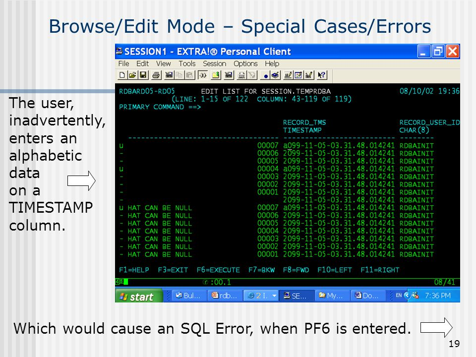 19 Browse/Edit Mode – Special Cases/Errors Which would cause an SQL Error, when PF6 is entered. The user, inadvertently, enters an alphabetic data on