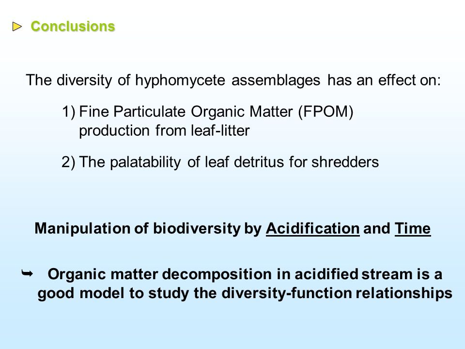 Conclusions The diversity of hyphomycete assemblages has an effect on: 1)Fine Particulate Organic Matter (FPOM) production from leaf-litter 2)The palatability of leaf detritus for shredders Manipulation of biodiversity by Acidification and Time  Organic matter decomposition in acidified stream is a good model to study the diversity-function relationships
