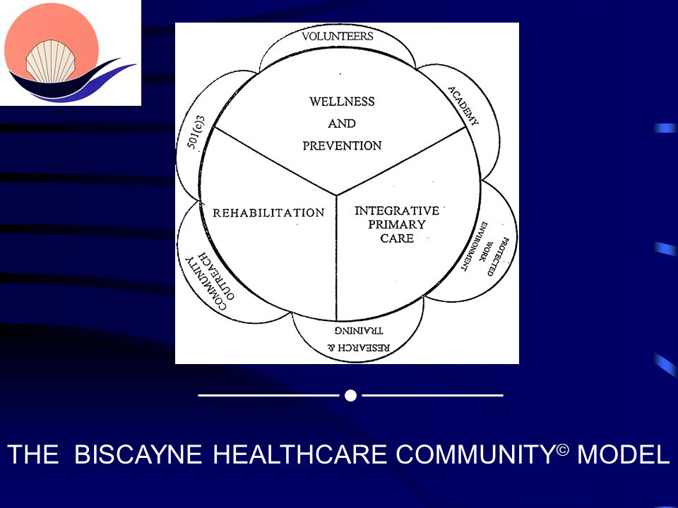 THE BISCAYNE HEALTHCARE COMMUNITY  MODEL