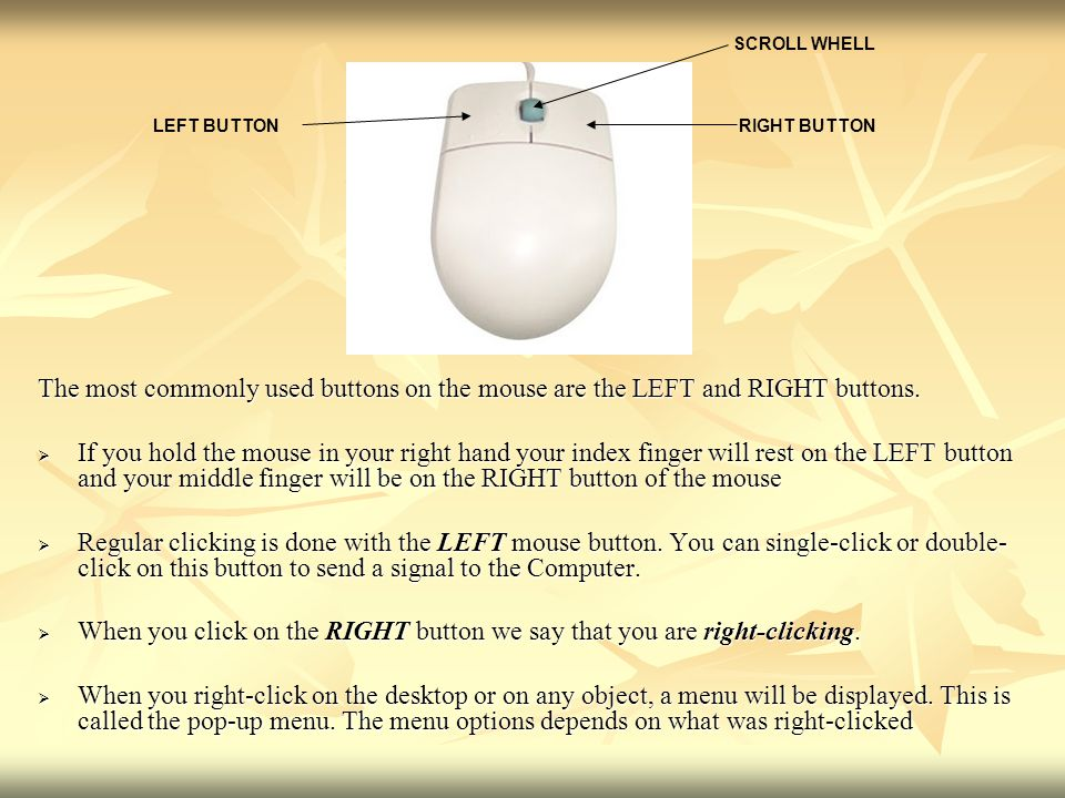 The most commonly used buttons on the mouse are the LEFT and RIGHT buttons.  If you hold the mouse in your right hand your index finger will rest on