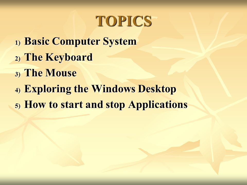 TOPICS 1) Basic Computer System 2) The Keyboard 3) The Mouse 4) Exploring the Windows Desktop 5) How to start and stop Applications