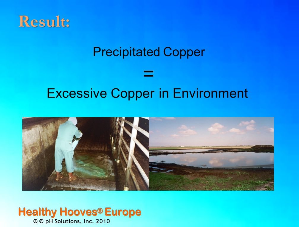 ® © pH Solutions, Inc. 2010 Result: Precipitated Copper = Excessive Copper in Environment