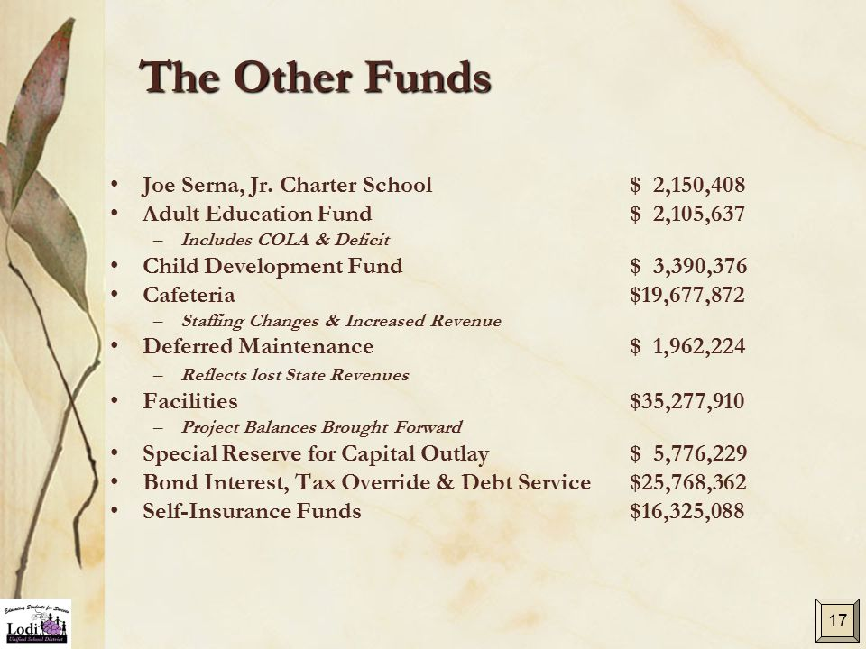 The Other Funds Joe Serna, Jr. Charter School $ 2,150,408 Adult Education Fund$ 2,105,637 –Includes COLA & Deficit Child Development Fund$ 3,390,376 C