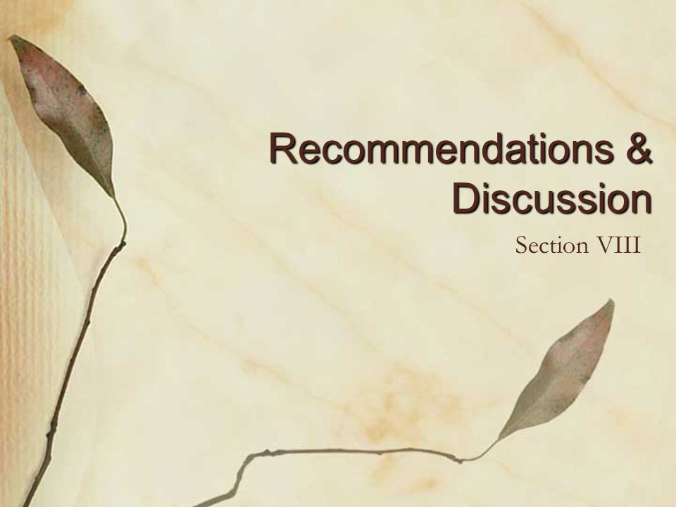 Recommendations & Discussion Section VIII