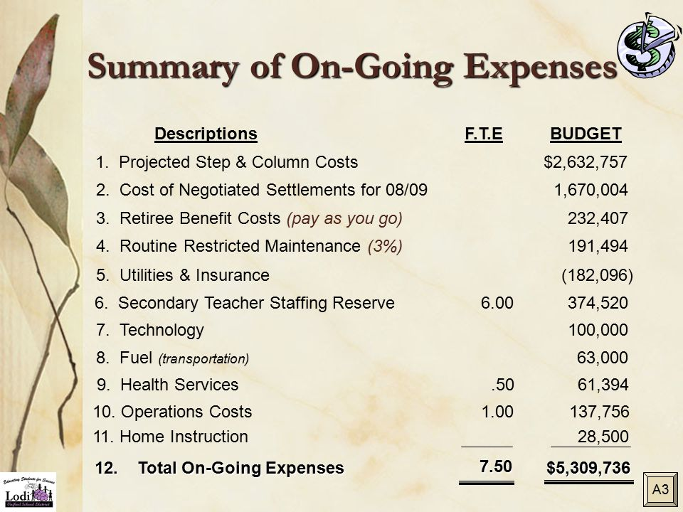 Summary of On-Going Expenses DescriptionsF.T.EBUDGET 3. Retiree Benefit Costs (pay as you go)232,407 5. Utilities & Insurance (182,096) 7. Technology1