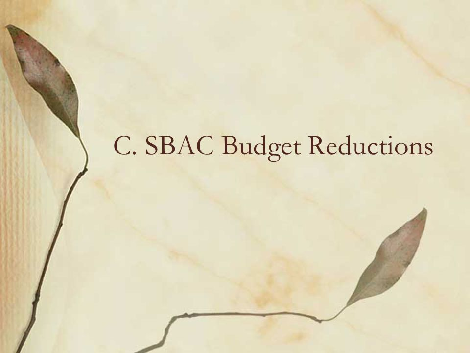 C. SBAC Budget Reductions