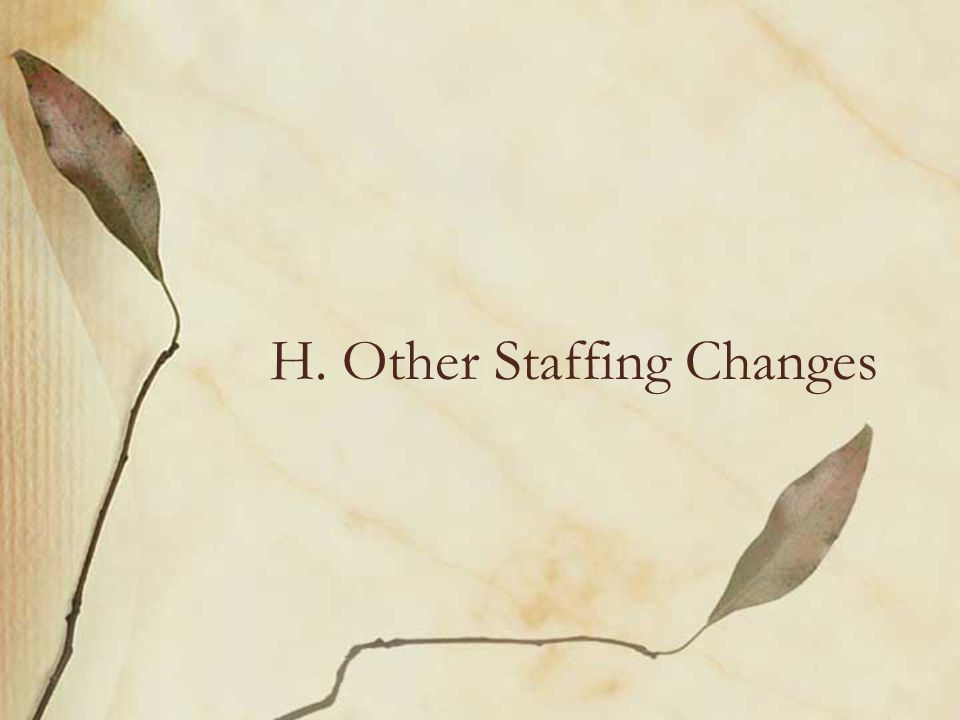 H. Other Staffing Changes