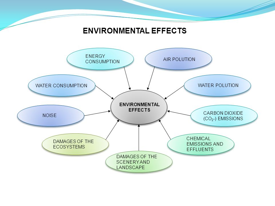 ENVIRONMENTAL EFFECTS NOISE DAMAGES OF THE ECOSYSTEMS WATER CONSUMPTION DAMAGES OF THE SCENERY AND LANDSCAPE ENERGY CONSUMPTION WATER POLUTION AIR POLUTION CARBON DIOXIDE (CO 2 -) EMISSIONS CHEMICAL EMISSIONS AND EFFLUENTS ENVIRONMENTAL EFFECTS
