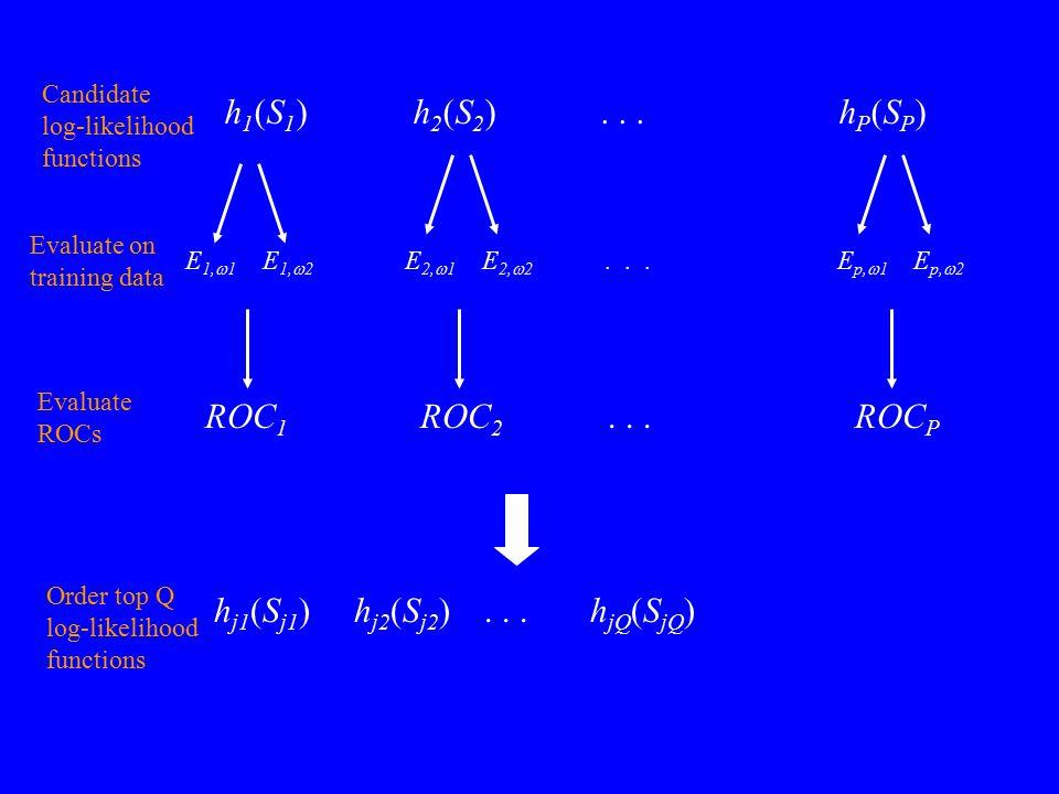 h 1 (S 1 ) h 2 (S 2 )... h P (S P ) E 1,  1 E 1,  2 E 2,  1 E 2,  2... E p,  1 E p,  2 Evaluate on training data ROC 1 ROC 2... ROC P Evaluate R