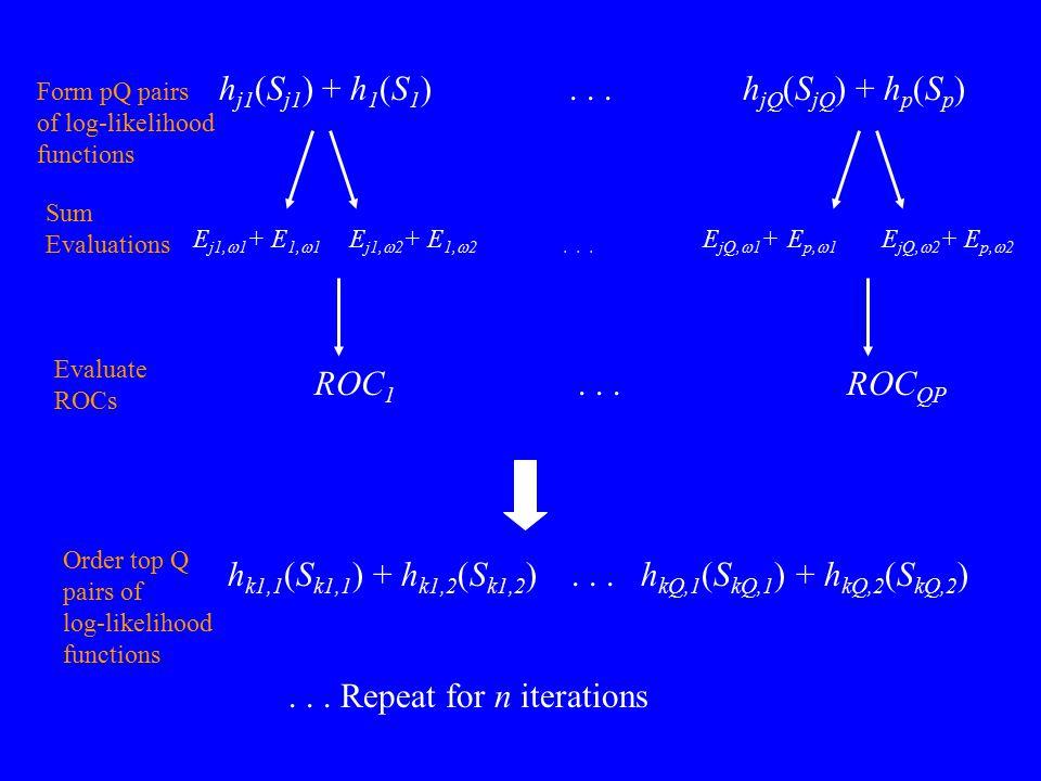 h j1 (S j1 ) + h 1 (S 1 )... h jQ (S jQ ) + h p (S p ) Form pQ pairs of log-likelihood functions E j1,  1 + E 1,  1 E j1,  2 + E 1,  2... E jQ, 