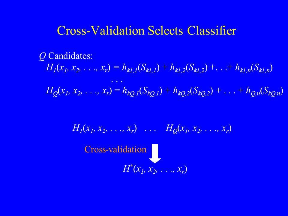 H 1 (x 1, x 2,..., x r )... H Q (x 1, x 2,..., x r ) Cross-Validation Selects Classifier Q Candidates: H 1 (x 1, x 2,..., x r ) = h k1,1 (S k1,1 ) + h