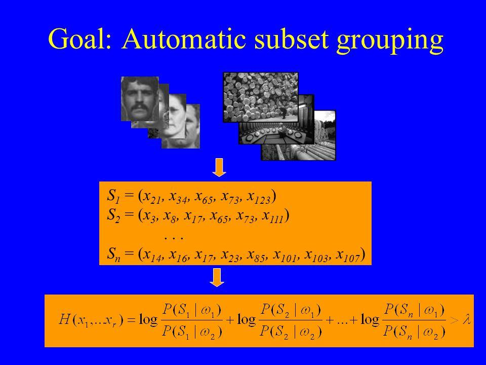 Goal: Automatic subset grouping S 1 = (x 21, x 34, x 65, x 73, x 123 ) S 2 = (x 3, x 8, x 17, x 65, x 73, x 111 )... S n = (x 14, x 16, x 17, x 23, x