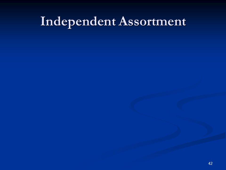 42 Independent Assortment