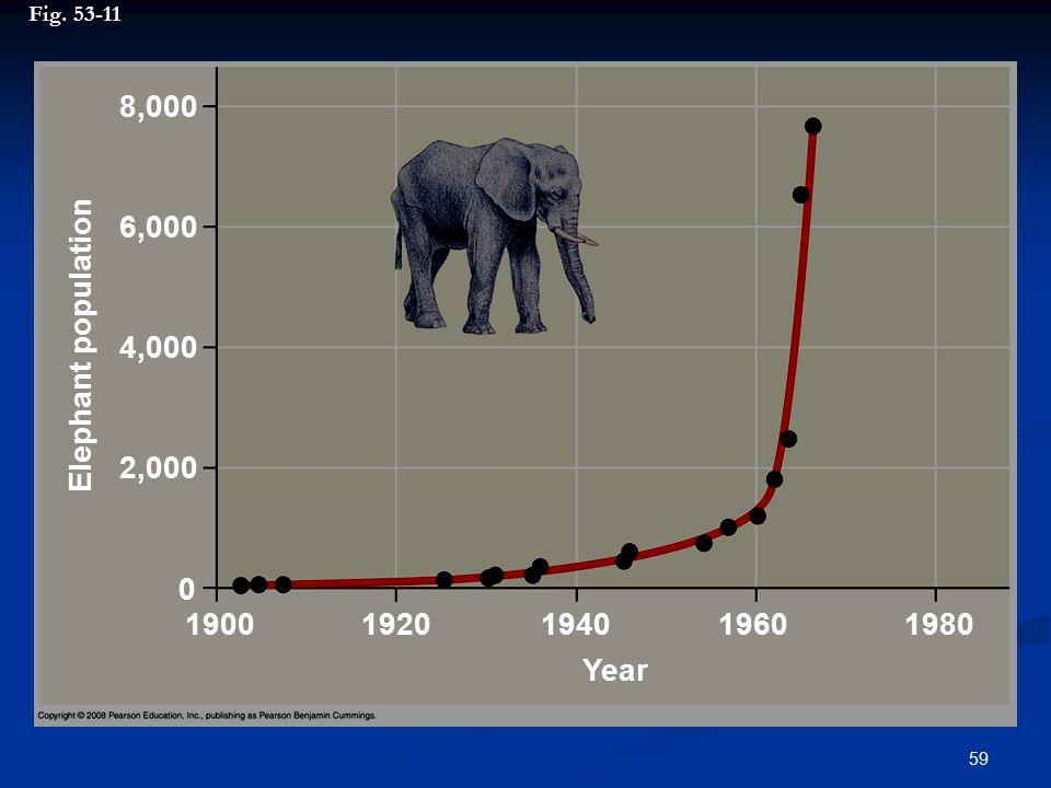 59 Fig. 53-11 8,000 6,000 4,000 2,000 0 1920194019601980 Year Elephant population 1900