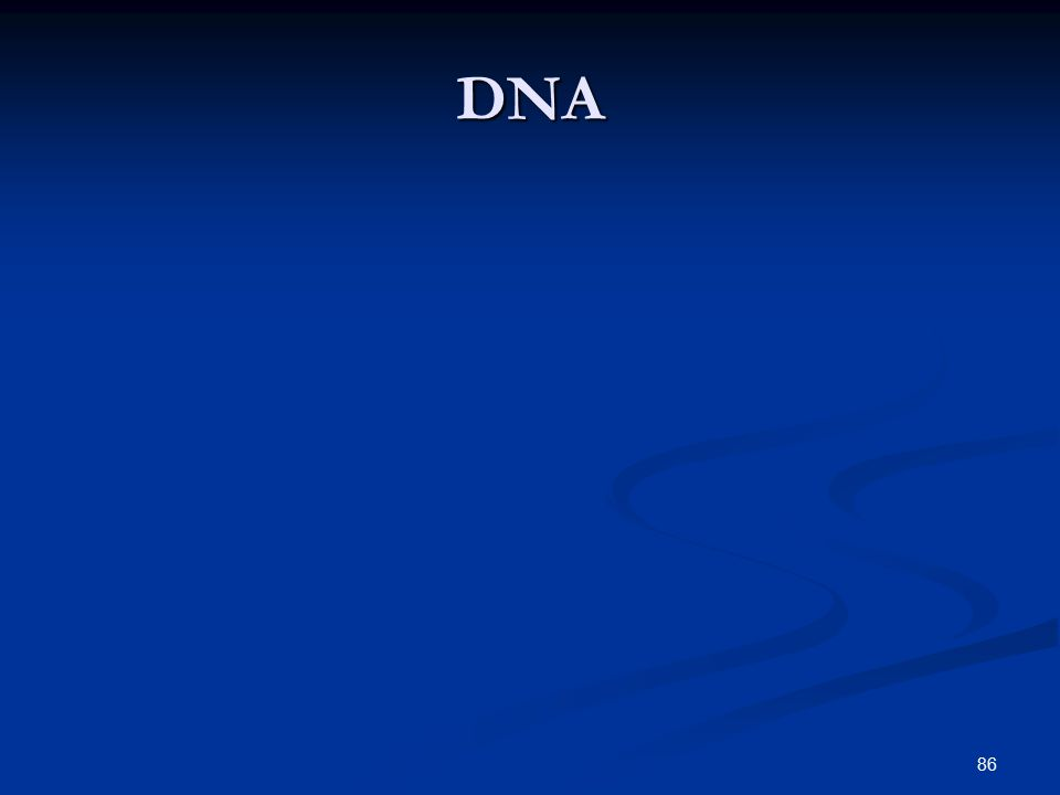 86 DNA