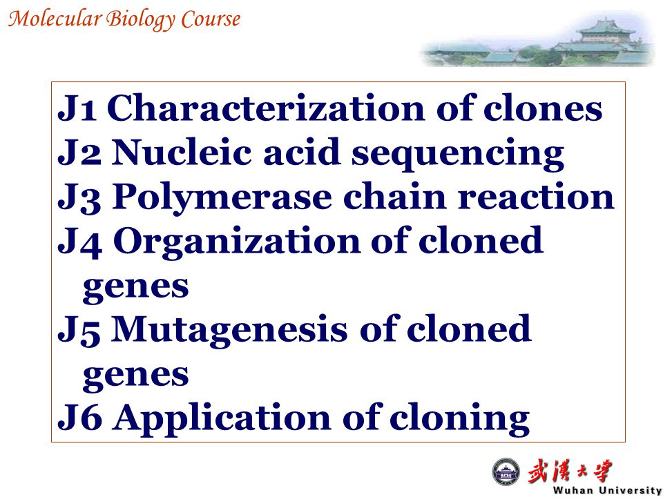 J2 Nucleic acid sequencing J2-1 DNA sequencing J2-2 RNA sequencing J2-3 Sequence databases J2-4 Analysis of sequences J2-5 Genome sequencing projects Analysis and uses of cloned DNA