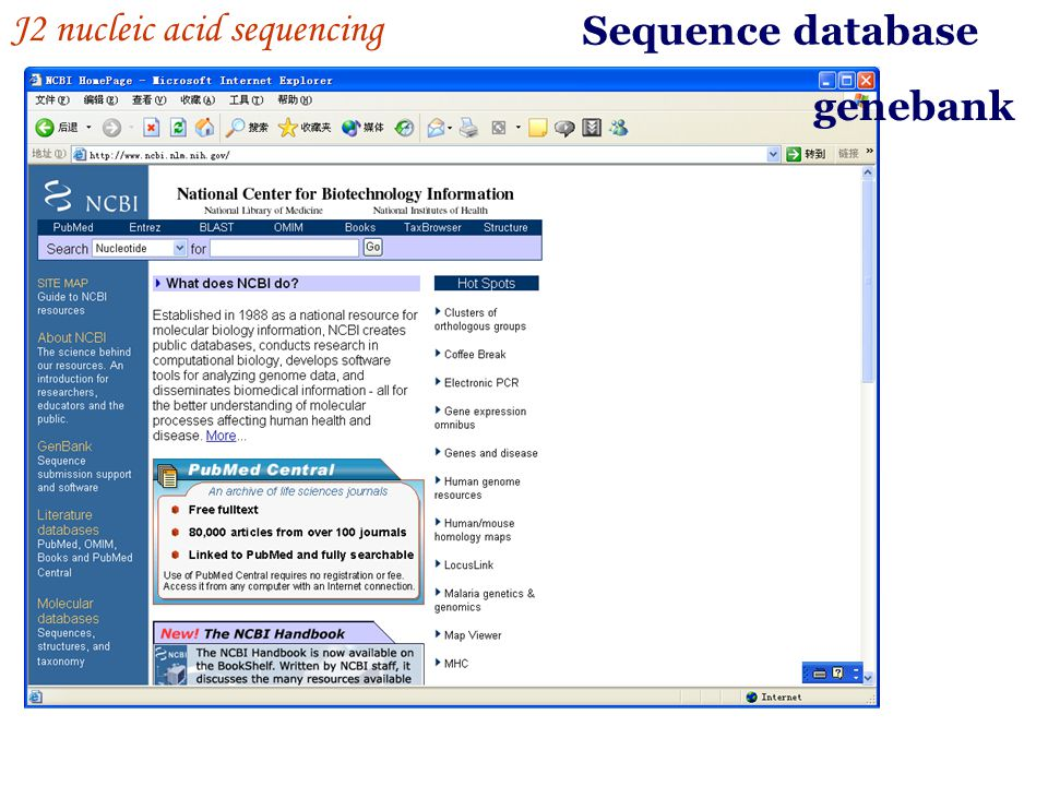 Sequence database J2 nucleic acid sequencing genebank