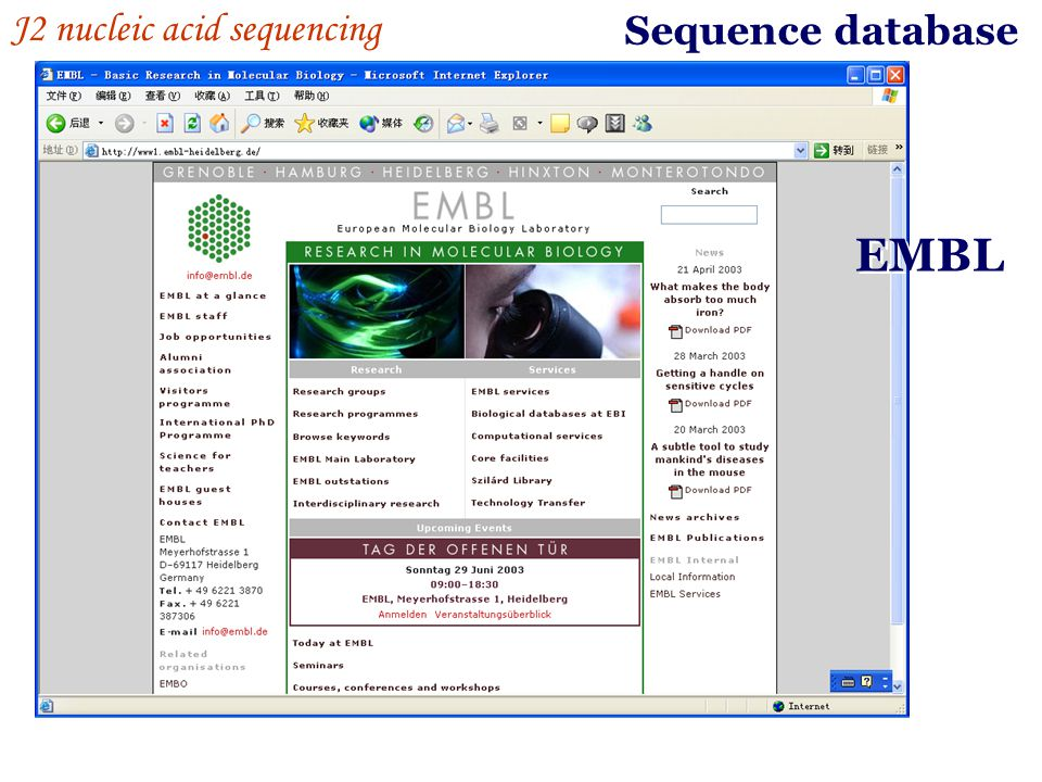 Sequence database EMBL J2 nucleic acid sequencing