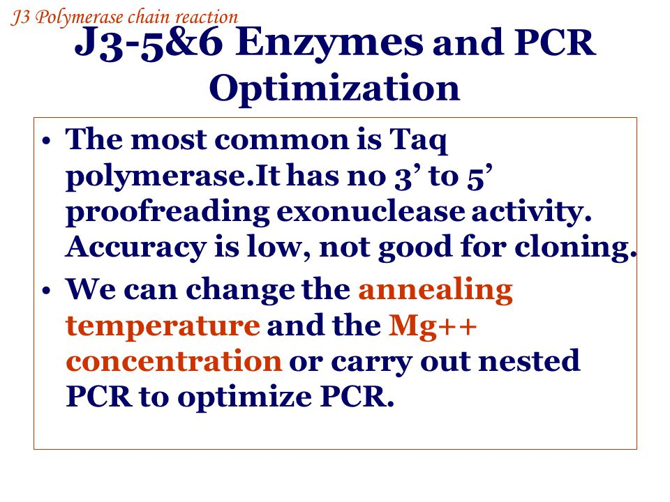 J3-5&6 Enzymes and PCR Optimization The most common is Taq polymerase.It has no 3' to 5' proofreading exonuclease activity. Accuracy is low, not good