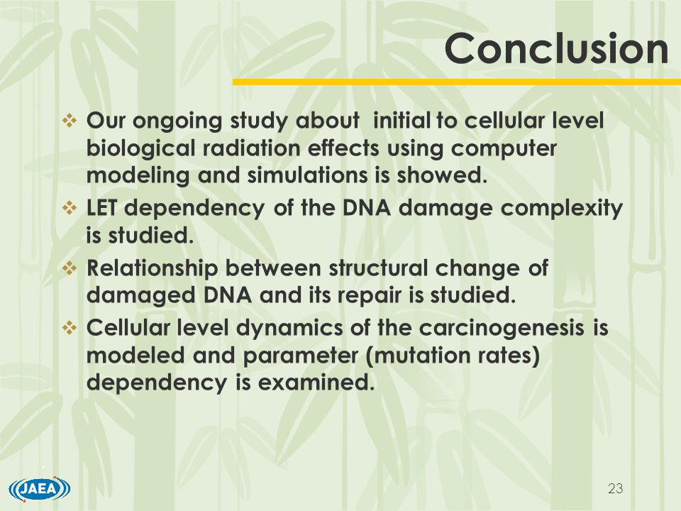 23 Conclusion  Our ongoing study about initial to cellular level biological radiation effects using computer modeling and simulations is showed.