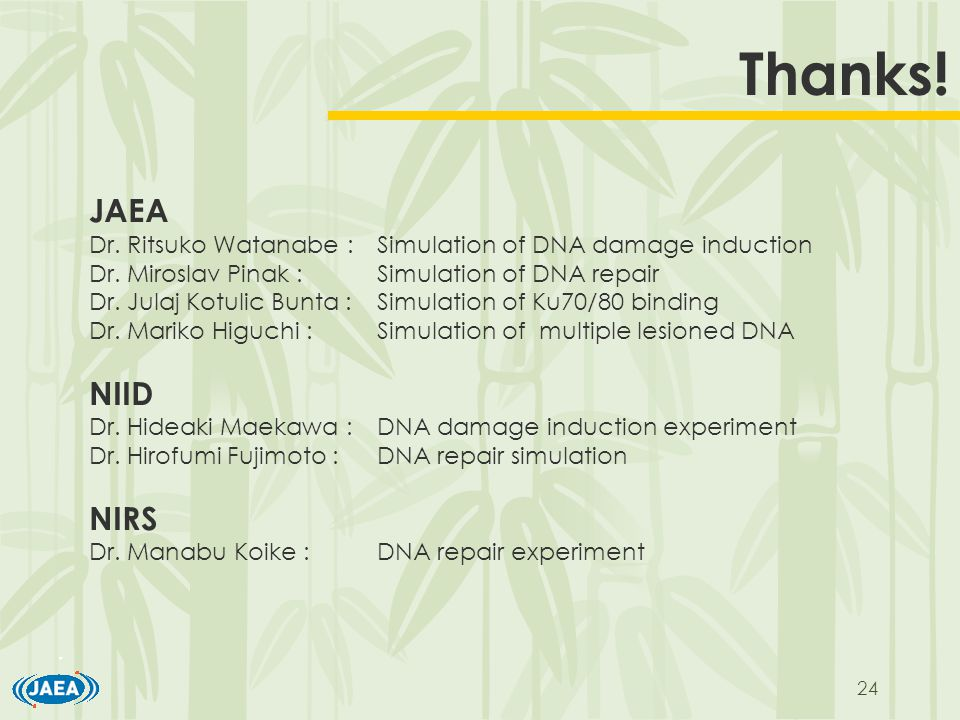 24 Thanks. JAEA Dr. Ritsuko Watanabe :Simulation of DNA damage induction Dr.
