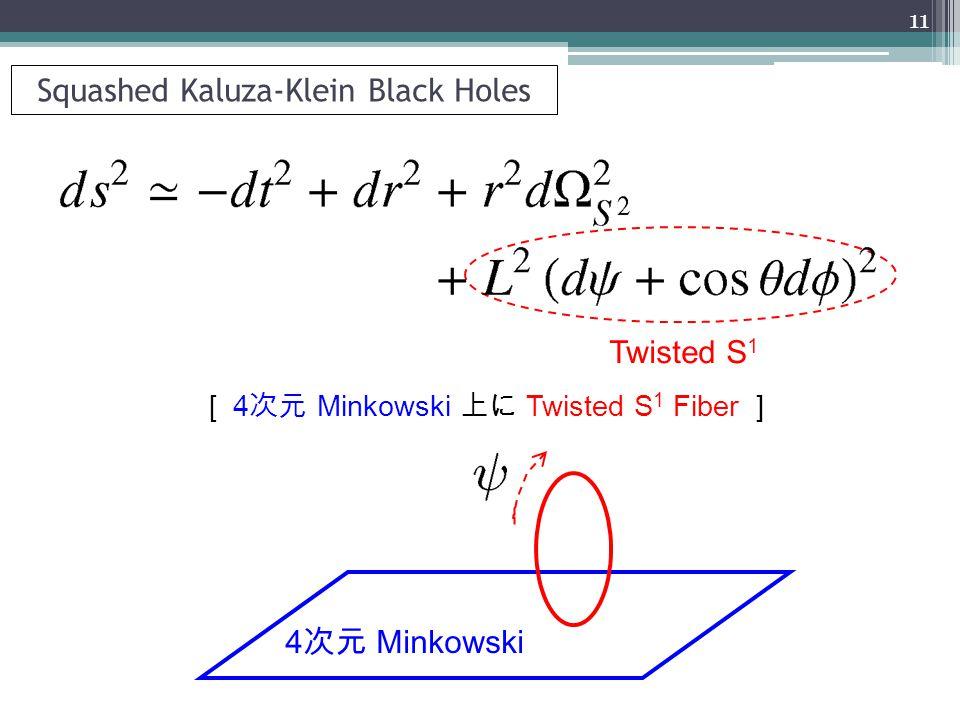 Squashed Kaluza-Klein Black Holes 4 次元 Minkowski Twisted S 1 [ 4 次元 Minkowski 上に Twisted S 1 Fiber ] 11