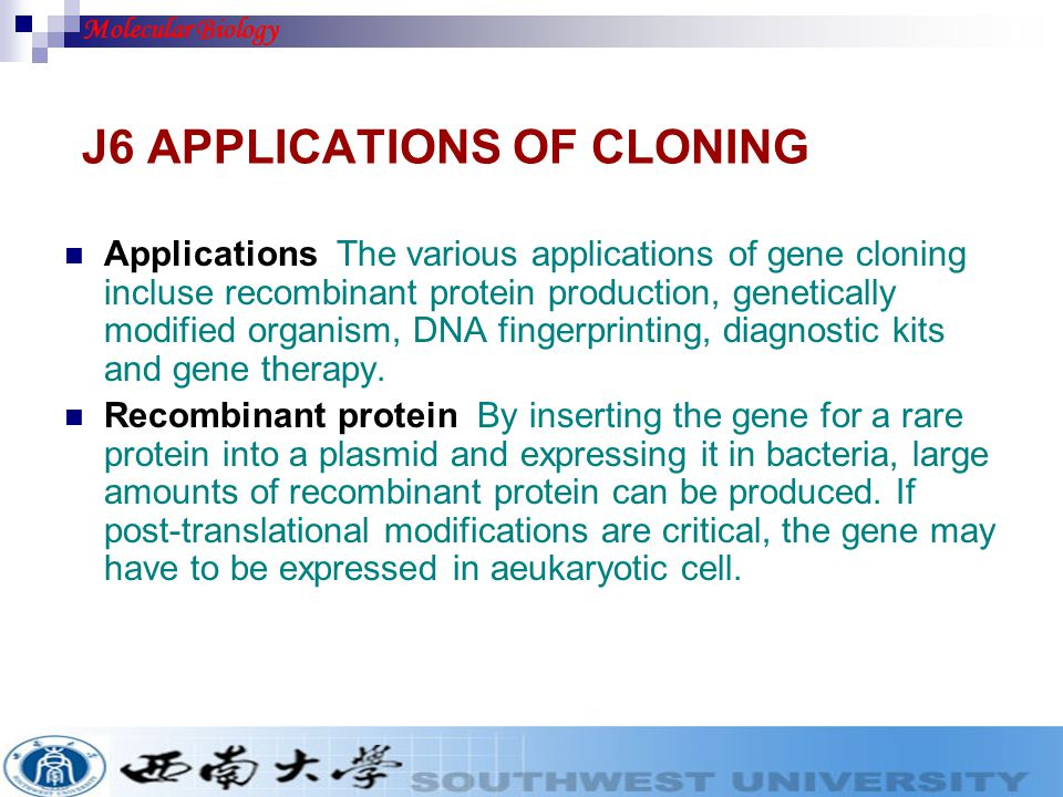 J6 APPLICATIONS OF CLONING Applications The various applications of gene cloning incluse recombinant protein production, genetically modified organism