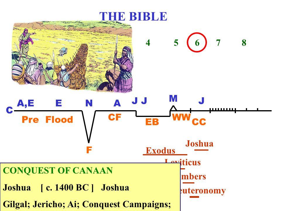 THE BIBLE 1 2 3 4 5 6 7 8 C A,EENA J M J Pre Flood F CF EB WW CC Genesis Exodus Leviticus Numbers Deuteronomy Joshua CONQUEST OF CANAAN Joshua [ c.