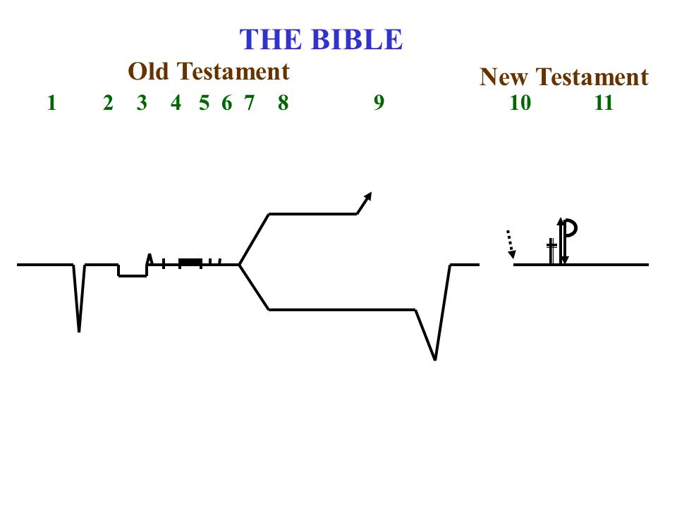 THE BIBLE 1 2 3 4 5 6 7 8 9 10 11 Old Testament New Testament
