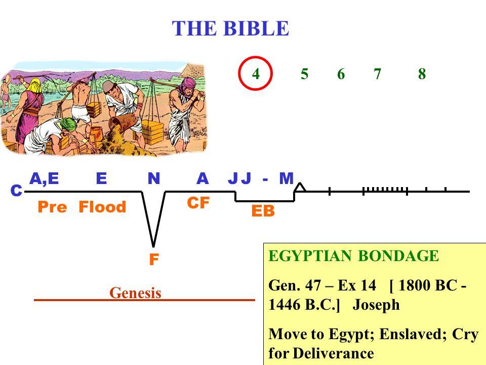 THE BIBLE 1 2 3 4 5 6 7 8 C A,EENAJ Pre Flood F CF EB Genesis EGYPTIAN BONDAGE Gen.