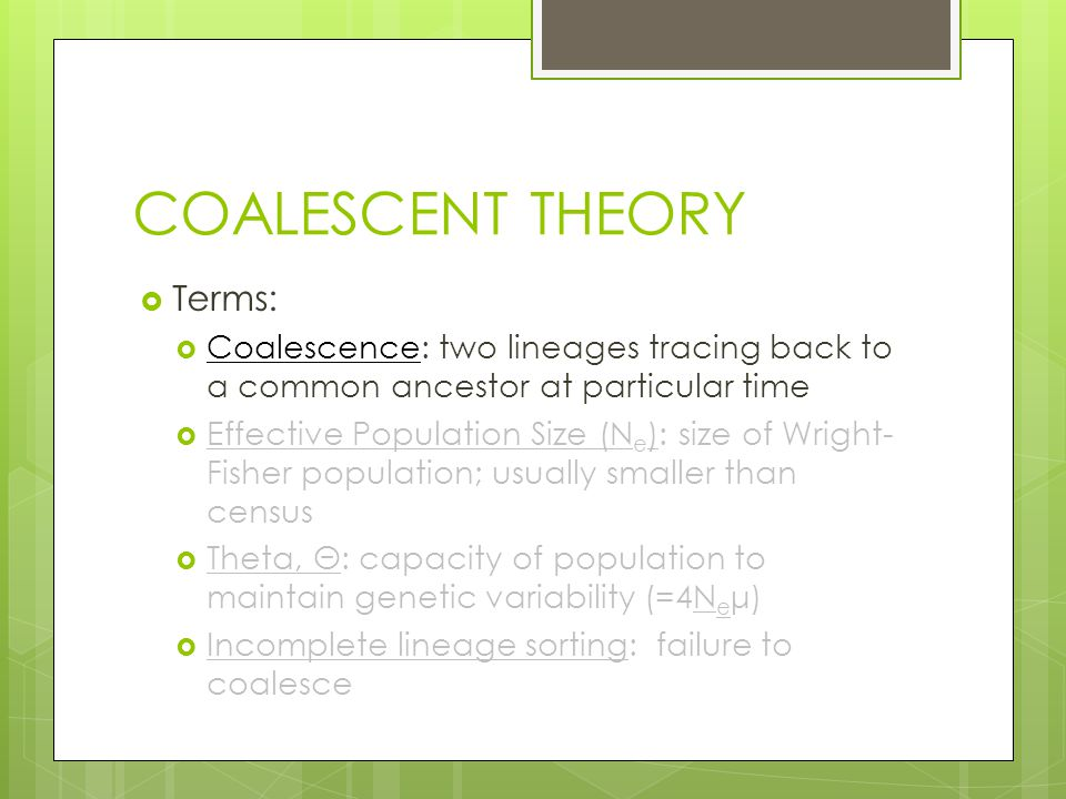 COALESCENT THEORY  Terms:  Coalescence: two lineages tracing back to a common ancestor at particular time  Effective Population Size (N e ): size of Wright- Fisher population; usually smaller than census  Theta, Θ: capacity of population to maintain genetic variability (=4N e μ)  Incomplete lineage sorting: failure to coalesce