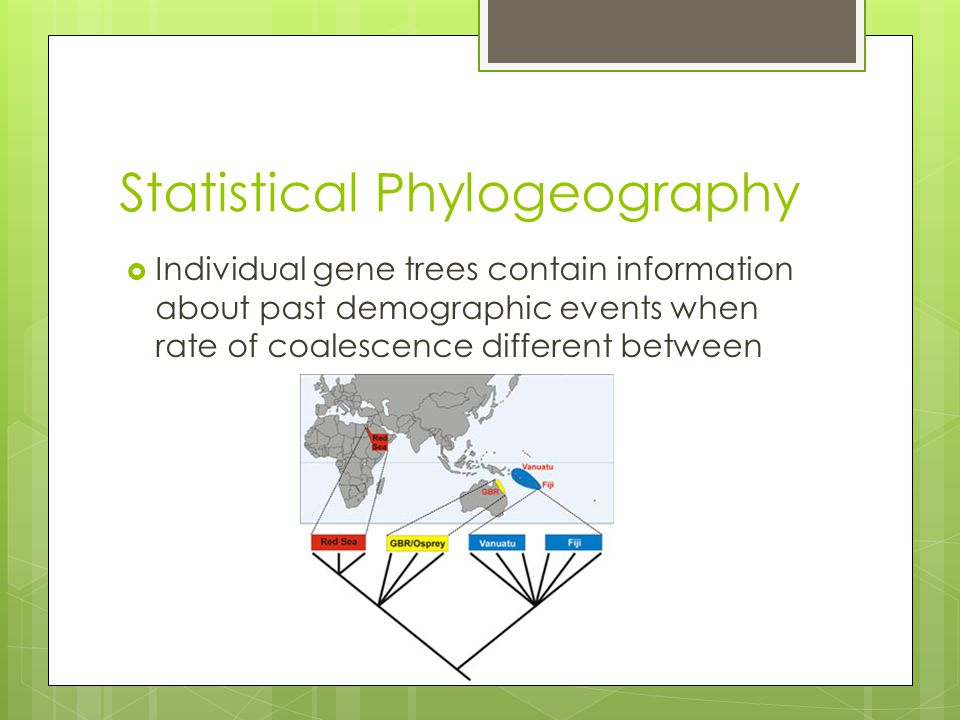 Statistical Phylogeography  Individual gene trees contain information about past demographic events when rate of coalescence different between