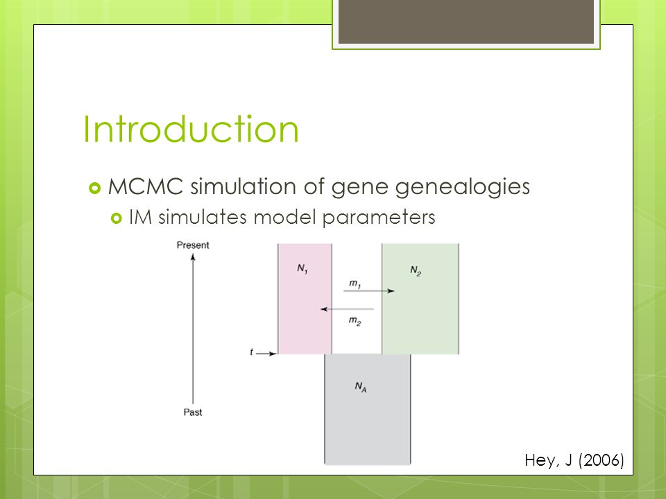 Introduction  MCMC simulation of gene genealogies  IM simulates model parameters Hey, J (2006)