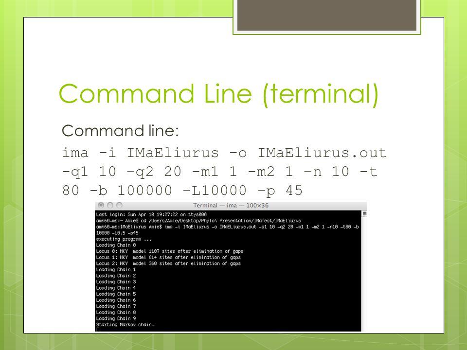Command Line (terminal) Command line: ima -i IMaEliurus -o IMaEliurus.out -q1 10 –q2 20 -m1 1 -m2 1 –n 10 -t 80 -b 100000 –L10000 –p 45