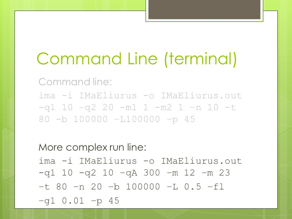 Command Line (terminal) Command line: ima -i IMaEliurus -o IMaEliurus.out -q1 10 –q2 20 -m1 1 -m2 1 –n 10 -t 80 -b 100000 –L100000 –p 45 More complex run line: ima -i IMaEliurus -o IMaEliurus.out -q1 10 -q2 10 –qA 300 –m 12 –m 23 –t 80 –n 20 –b 100000 –L 0.5 –fl –g1 0.01 –p 45
