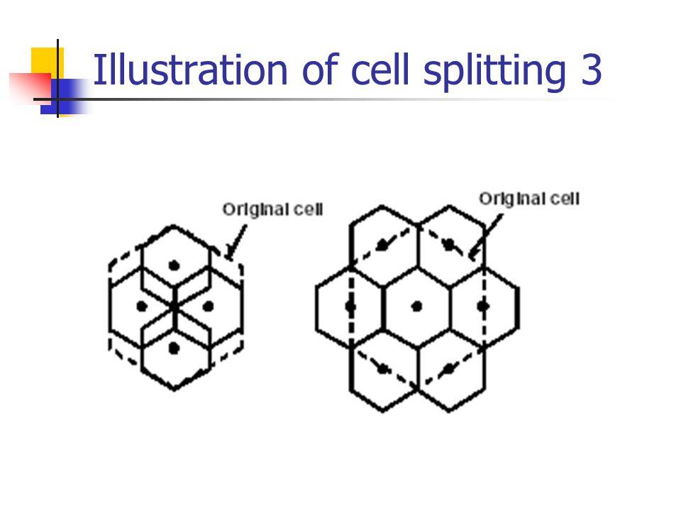 Illustration of cell splitting 3
